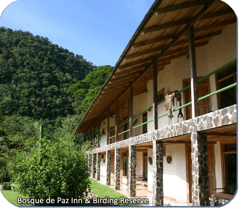 Bosque de la Paz Inn & Bird Reserve view