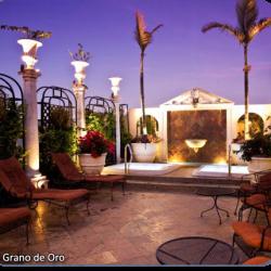 GRANO DE ORO REST