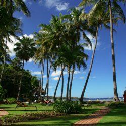 TAMARINDO DIRIA PRIVATE BEACH FRONT R&R GRASS