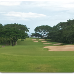 WESTIN PLAYA CONCHAL GOLF COURSE