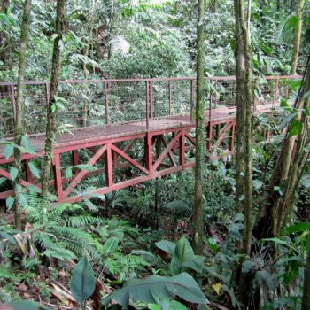 Aguila hanging bridge