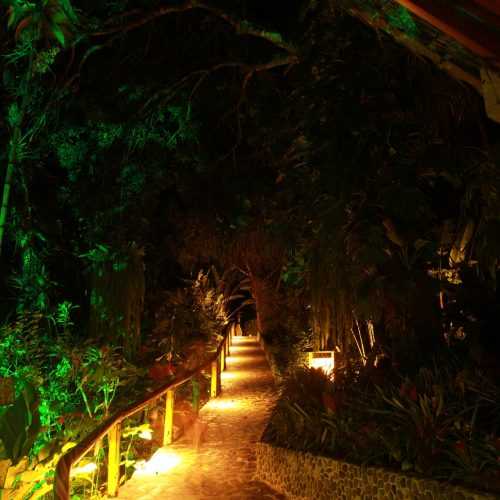 Aguilas path to rooms up hill