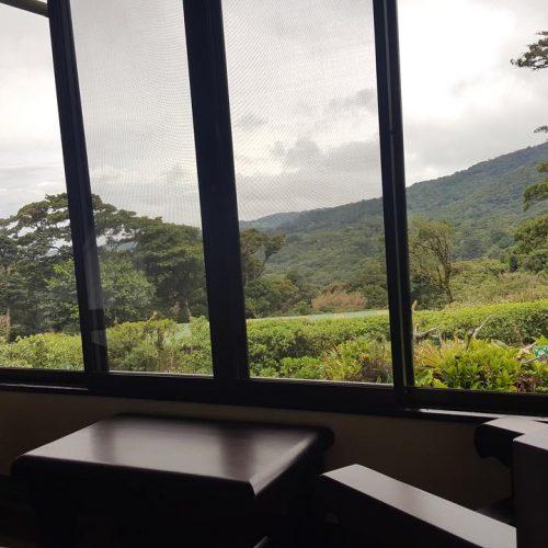 Trapp Lodge View