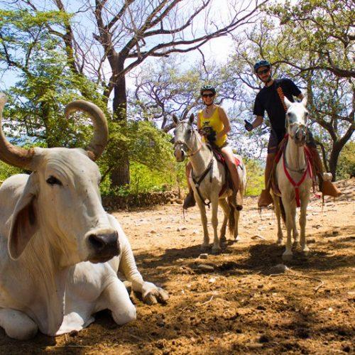 hacienda_horseback_tour