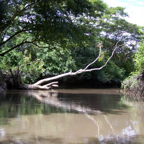 PALO VERDE & GUAITIL VILLAGE (33)