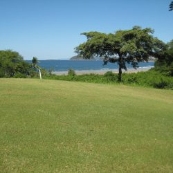 Penillas Golf Course (52)